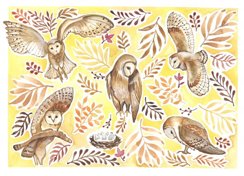 owls watercolour childrens literary illustration bird print