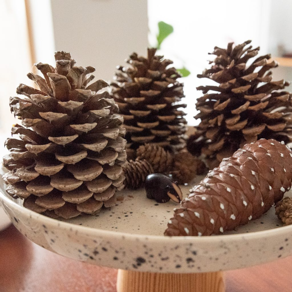 autumnal styling product pinecones