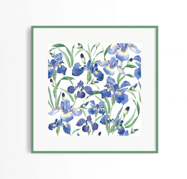 irises watercolour print painting floral