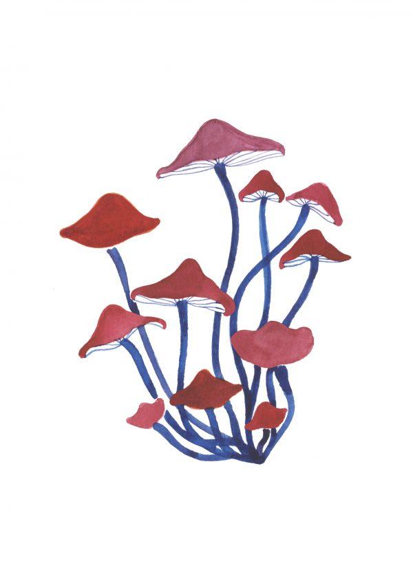 mushroom print illustration