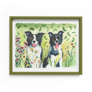 border collies pet illustration